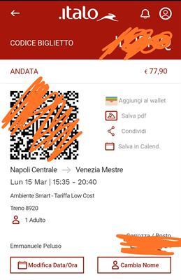 Italo Napoli Centrale-Venezia Mestre
